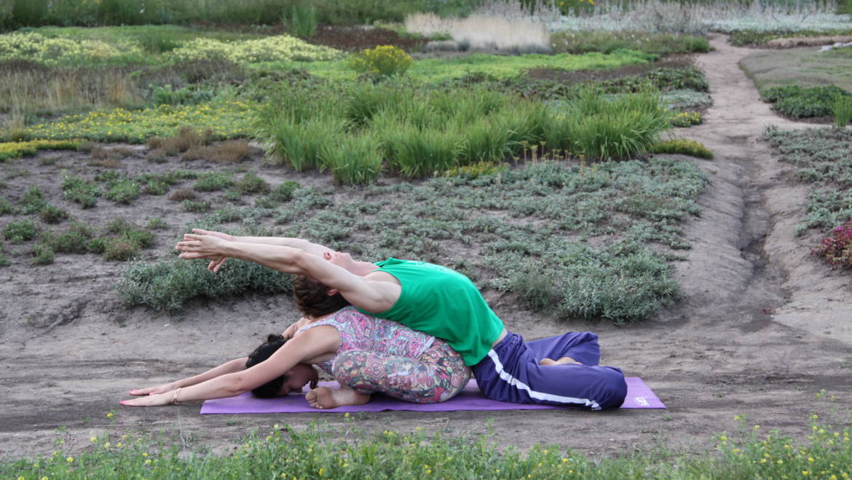 Парная йога как наиболее эффективный способ решения семейных конфликтов